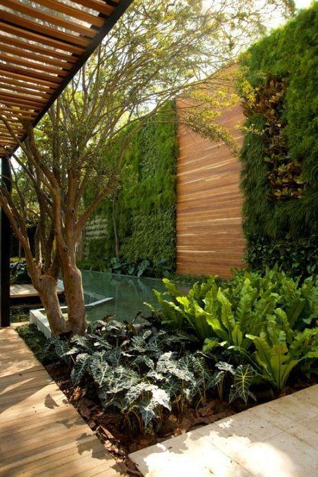 gardul viu cu panouri din lemn de rasinoase
