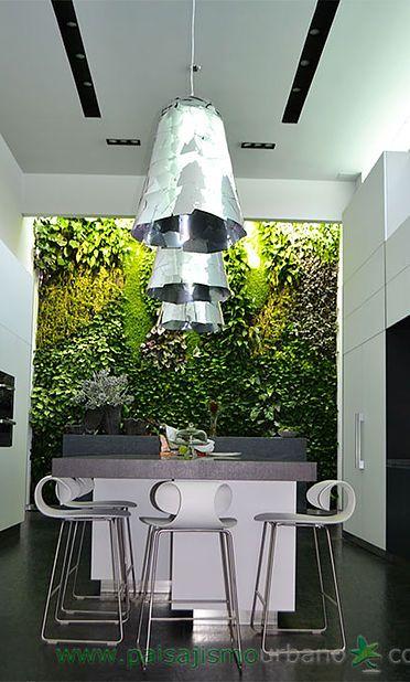 plantele ornamentale de interior
