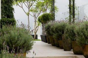 Pergole si ghivece cu flori pentru o curte bine definita