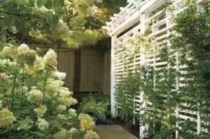 Pergola atractiva pentru plantele decorative